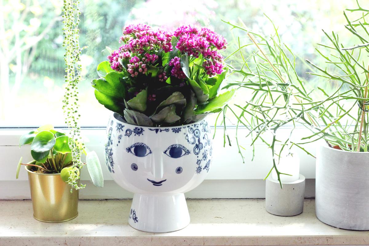 Ein DIY - Muttertagsgeschenk mit Herz und Always Kalanchoë