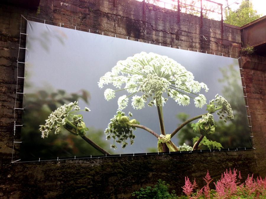 Natur im Ruhrgebiet